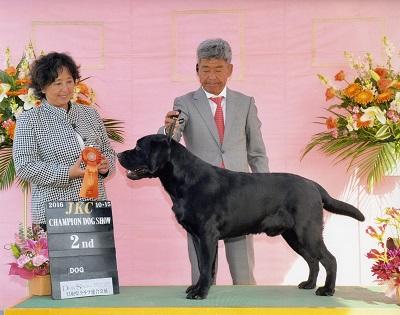 2016.10.15鳥取県クラブ連合会展ラスキーG2.jpg