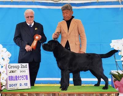 2017.2.12和歌山愛犬クラブ展ラスキーG2.jpg