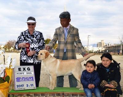2017.3.11大阪東ワンダフルケネルクラブ展バロンP・EXG.jpg