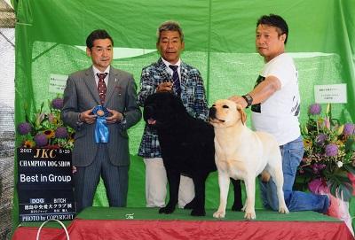 2017.5.20徳島中央愛犬クラブ展ラスキー&リンダG1.jpg