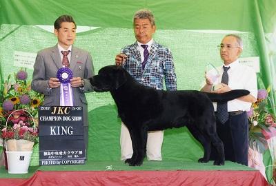 2017.5.20徳島中央愛犬クラブ展ラスキーKING.jpg