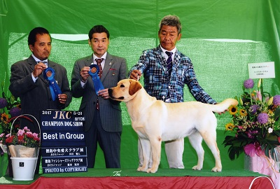 2017.5.20徳島中央愛犬&徳島ファンシャーズドッグリンダG1.jpg