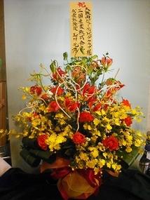 2011年10月10日  大阪西ナンバビューティドッグクラブ展 ティナーG2