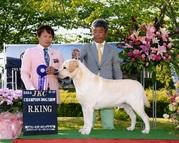 2014年5月17日 リッチ R.KING レディ G3 神戸フィールオールドッグクラブ展