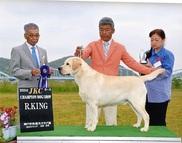 2014年5月5日 リッチ R.KING ジーナ G2 神戸中央愛犬クラブ展