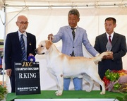 2014年9月28日 イージス R.KING ジーナ G1 徳島西部愛犬クラブ展