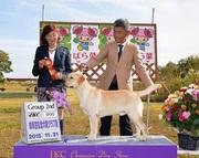 2015年11月21日 ブラフG2 岐阜笠松全犬種クラブ展