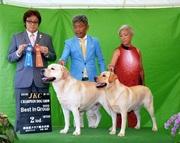 2016年9月11日 ハマーG1 リンダG2 徳島県クラブ連合会展