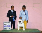 2017年5月13日 ペペG1 リンダG1 バロンG2 奈良県クラブ連合会展